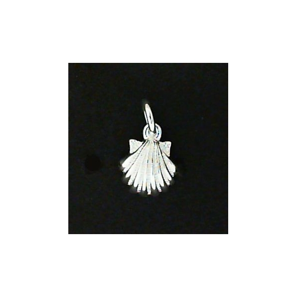 Charm - Sterling Silver Satin And Polished Sea Shell Charm