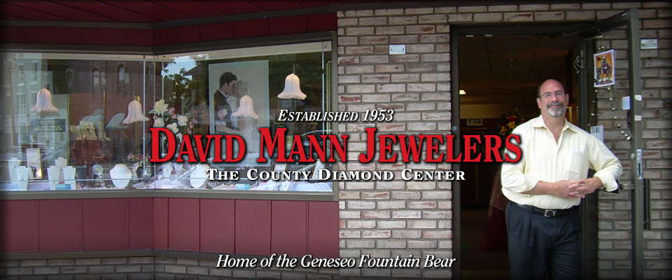 David Mann Jewelers - Custom Homepage Banner