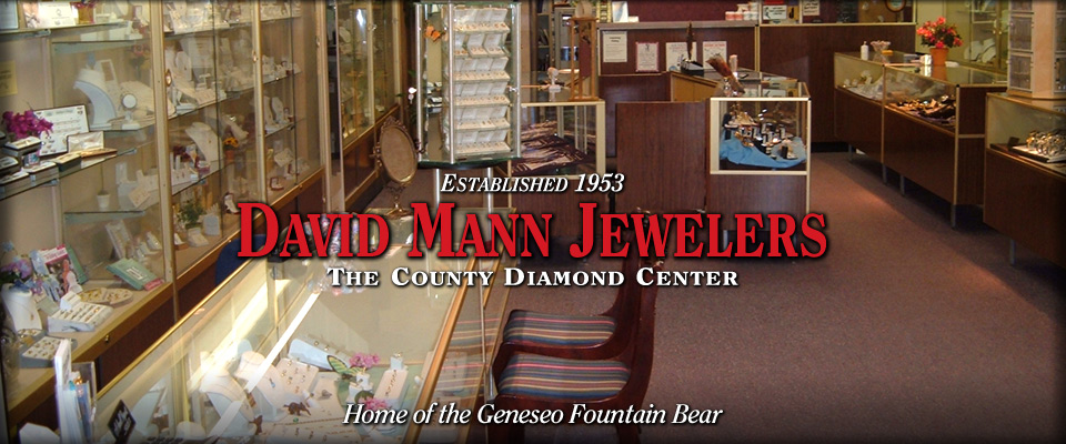 David Mann Jewelers #2 - Custom Homepage Banner