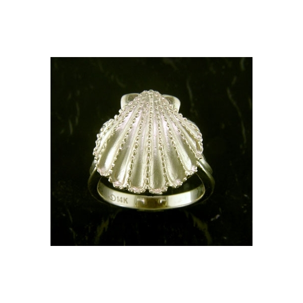 Ring - Lady's Yellow Gold 14 Karat Scallop Shell Ring-Steven Douglas Designs