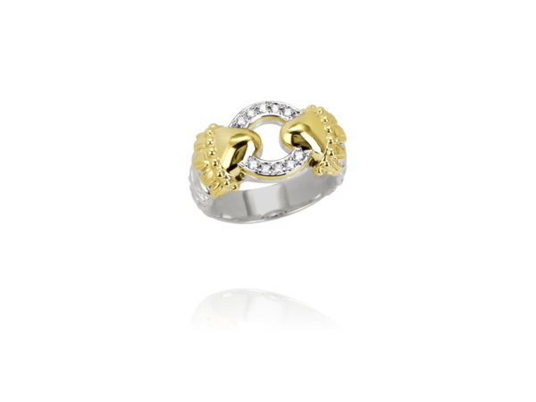 Fashion Ring - New piece! Alwand Vahan .10ctw diamond ring in sterling silver and 14ky gold, size 7. This ring can be sized, please call for pricing.