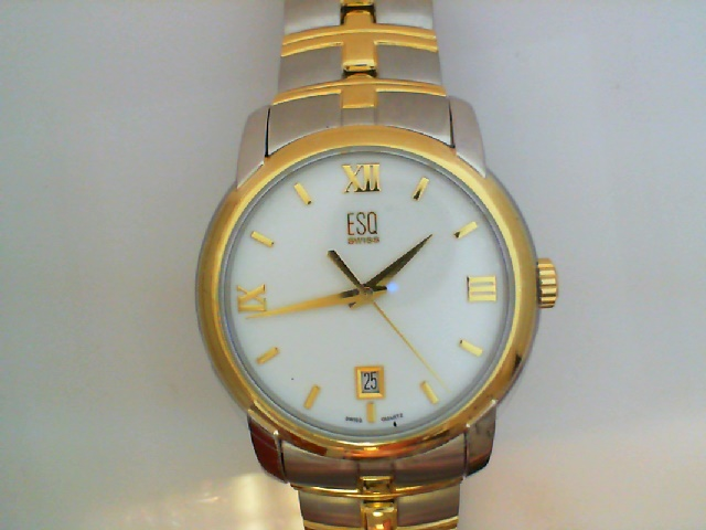 Watch - ESQ Gents Muse Two-Tone Stainless Steel Round White Dial Roman #'S And Dash Dial Markers Date Watch