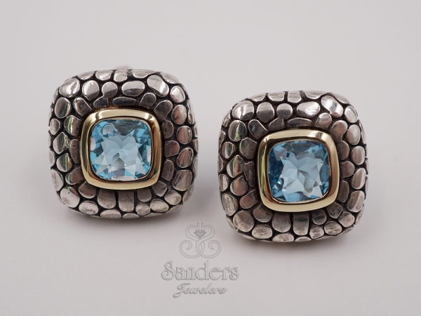 Earrings - Two-Tone Blue Topaz Earrings