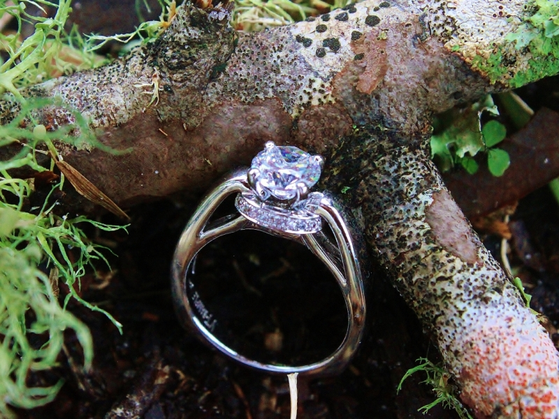 Engagement Rings - Solitaire with Gallery Halo