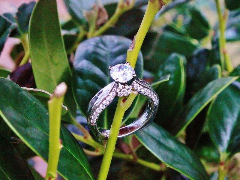 Bridal Jewelry - Solitaire with Diamond Profile