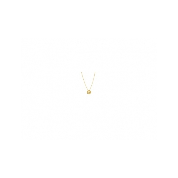 KARAT GOLD PENDANTS/CHARMS - 14 KARAT YELLOW GOLD MINI DISK CUT OUT PAW PRINT PENDANT ON ADJUSTABLE CABLE CHAIN