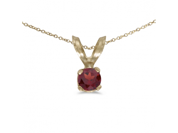 14k Yellow Gold Round Garnet Pendant by Color Merchants