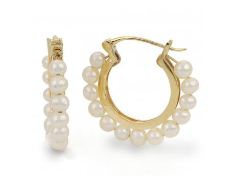 14K Yellow Gold Freshwater Pearl Earring - 14KY 3-4MM FW CULT PEARL  HOOP EARRING