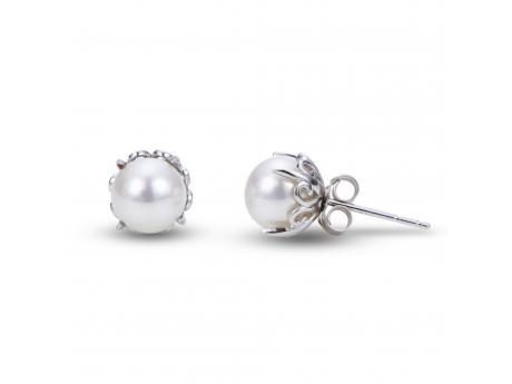 14K White Gold Freshwater Pearl Earrings - 14KW 7.5-8MM AA FWCP FILIGREE EARRINGS