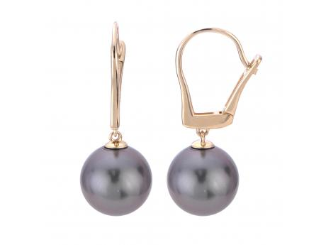 14K Yellow Gold Tahitian Pearl Earrings - 14K 9-10MM TAHITIAN PEARL EARRINGS