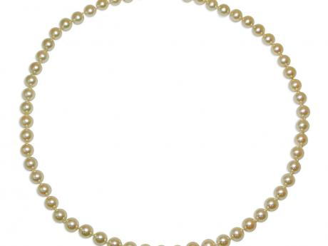 14K Yellow Gold Akoya Pearl Necklace Patterson's Diamond Center Mankato, MN