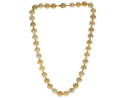 14K Yellow Gold Golden South Sea Pearl Necklace Karen's Jewelers Oak Ridge, TN