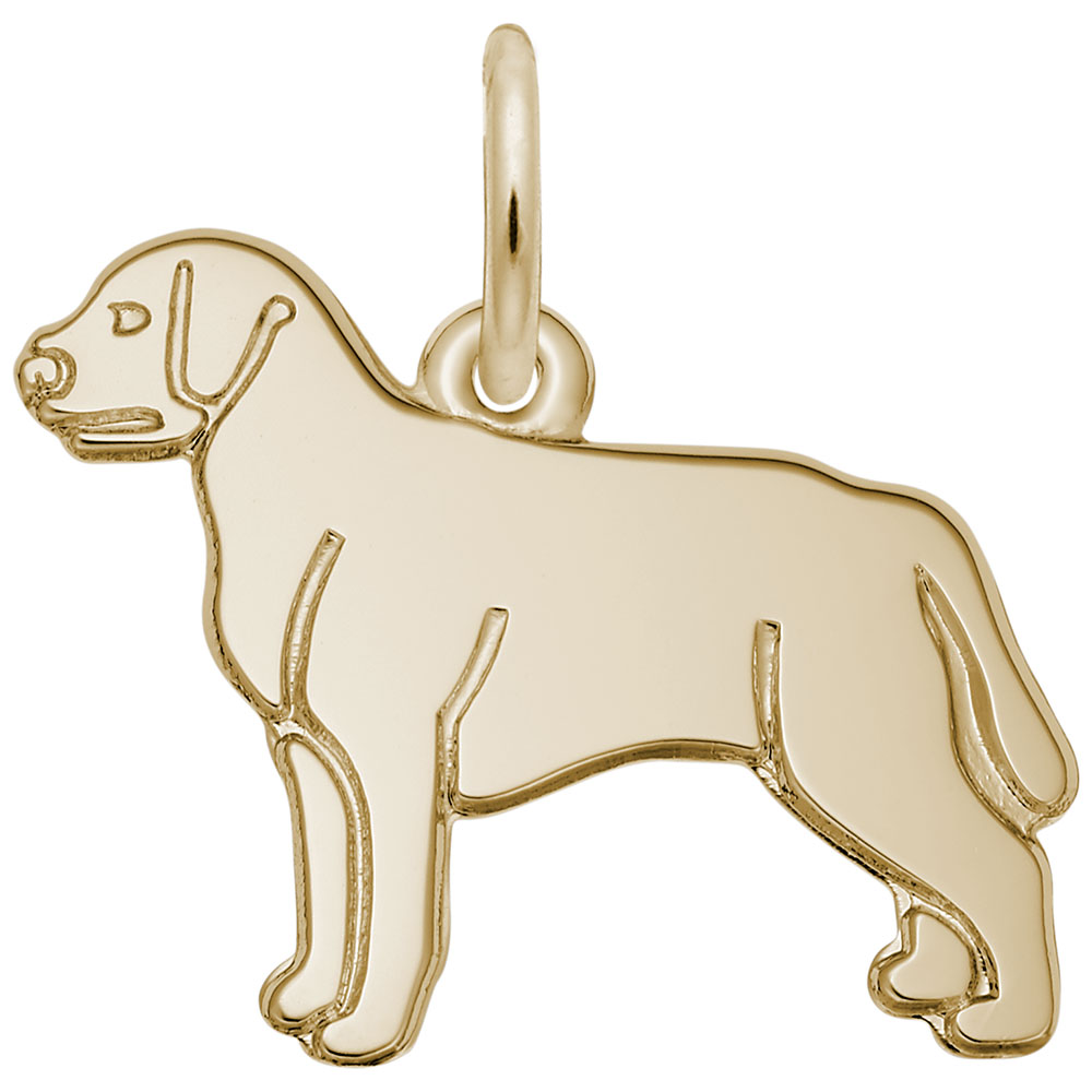 Labrador Retriever by Rembrandt Charms