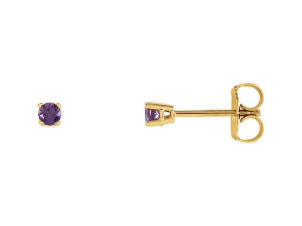 Round 4-Prong Lightweight Wire Basket Earrings - 14K Yellow 2.5mm Round Amethyst Earrings